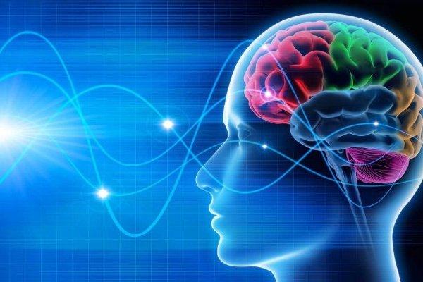 В каком измерении рождаются мысли?