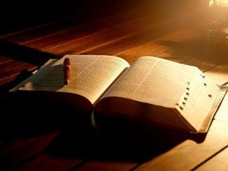 Чтение книг и продолжительности жизни. Какая связь ?