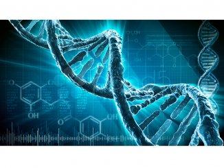 Генетики опровергли теорию «мусорной» ДНК