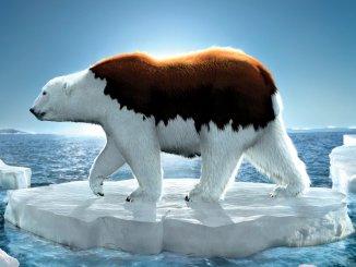 Глобальное потепление. Передышка длиной в 10 лет