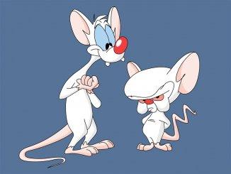 История о том, как человека приравняли к крысам
