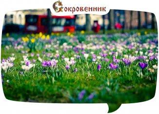 На душе весна