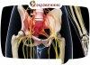 Разблокируй седалищный нерв
