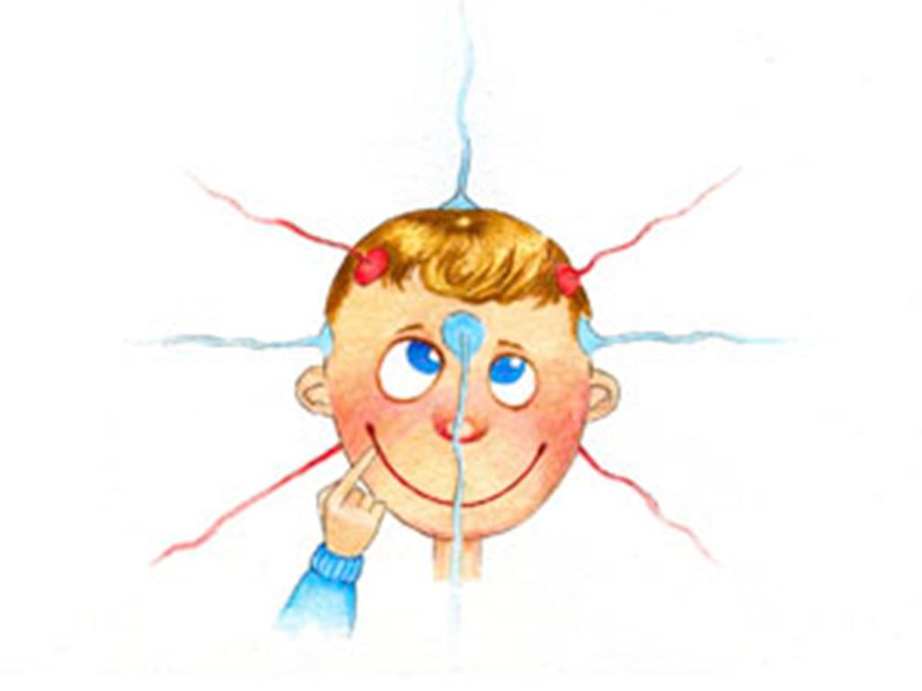 Источник страха и агрессивности – или Новые загадки мозга