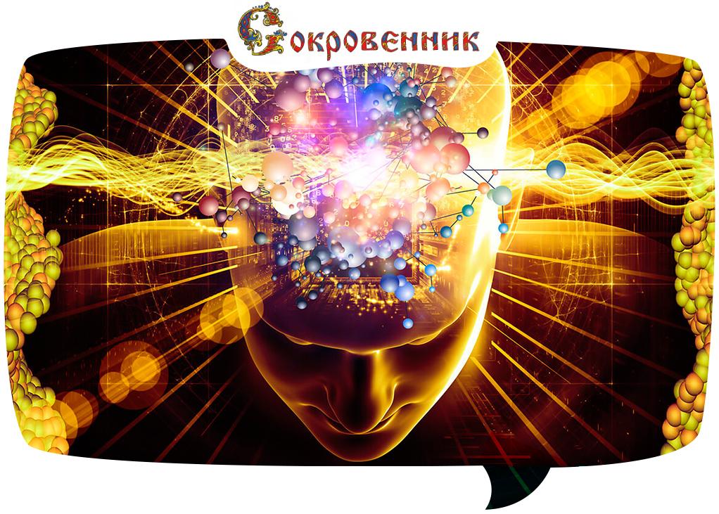 Мозг без ума и совести