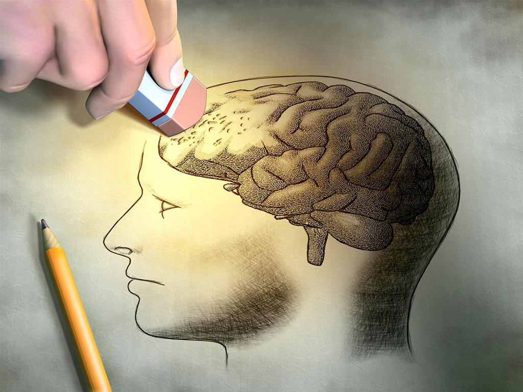 Может ли человек жить без мозга?