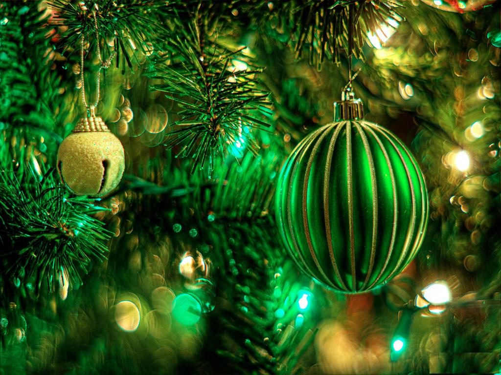 Новогоднее обращение Анастасии Новых!