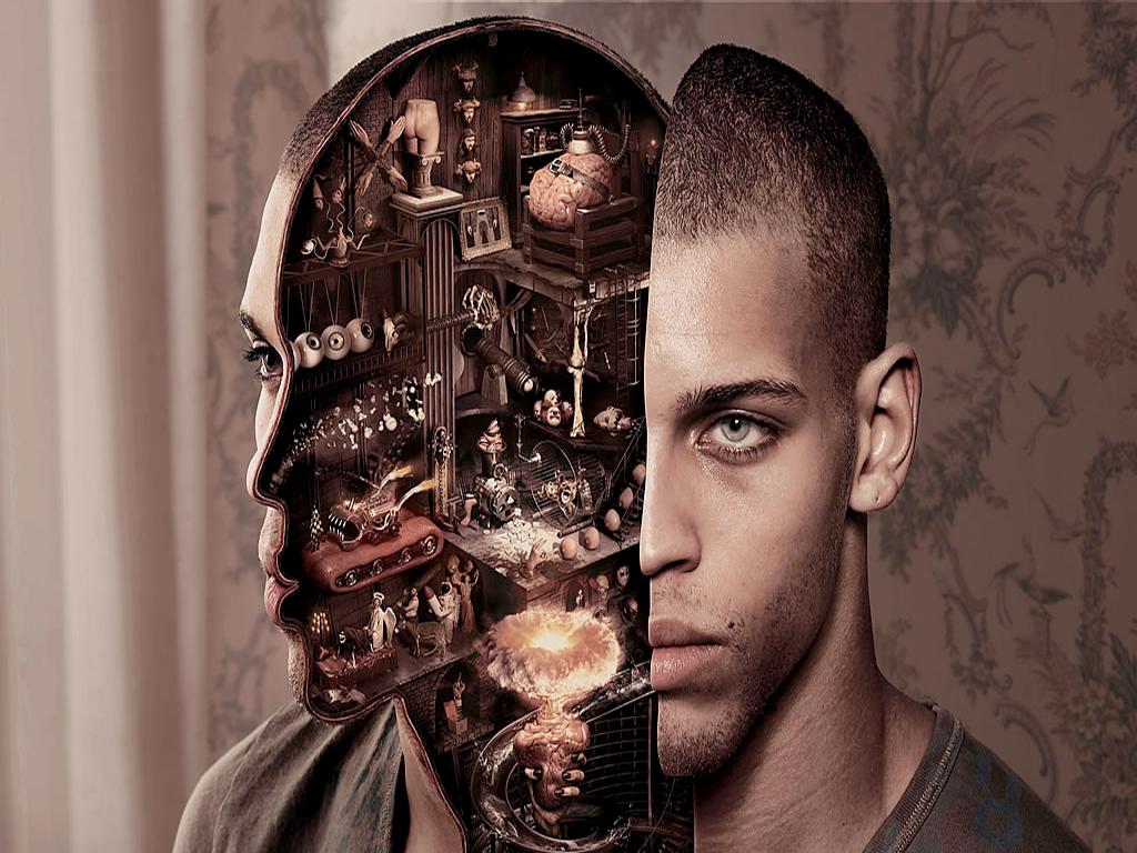 Раскрывая загадки мозга…